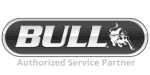 We clean and repair Bull BBQ Grills